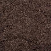 braune Wasserpflanzen Erde aus Torf