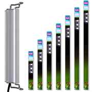 Arcadia Classica LED Stretch Süßwasser