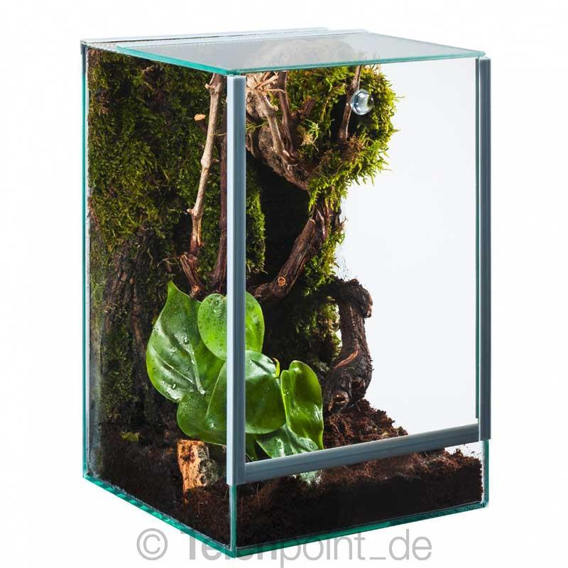 glas terrarium f r spinnen glasterrarium fallt r bel ftung reptilien amphibien ebay. Black Bedroom Furniture Sets. Home Design Ideas