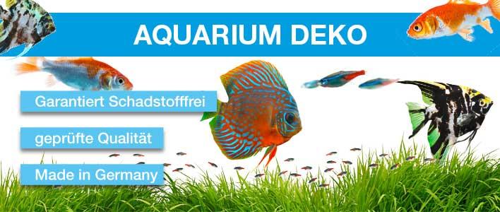 verschiedene Fische im Aquarium, am Boden Gras und farbiger Aquarienkies