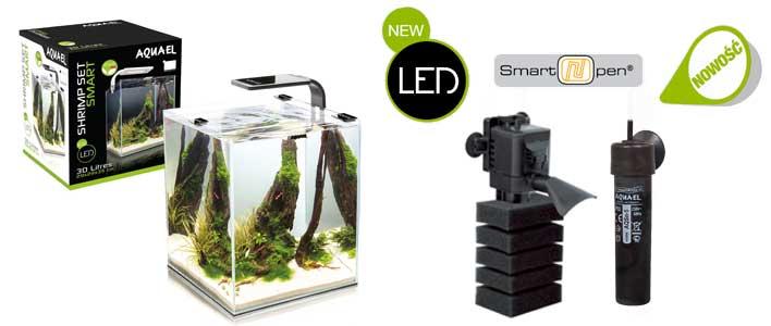 ein eingerichtetes Shrimp Set mit kleinen Fischen und Garnelen, Filter und Heitzer