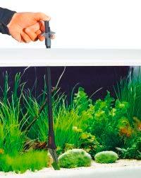 Reinigung eines Nano-Aquarium mit einer Pflanzenzange
