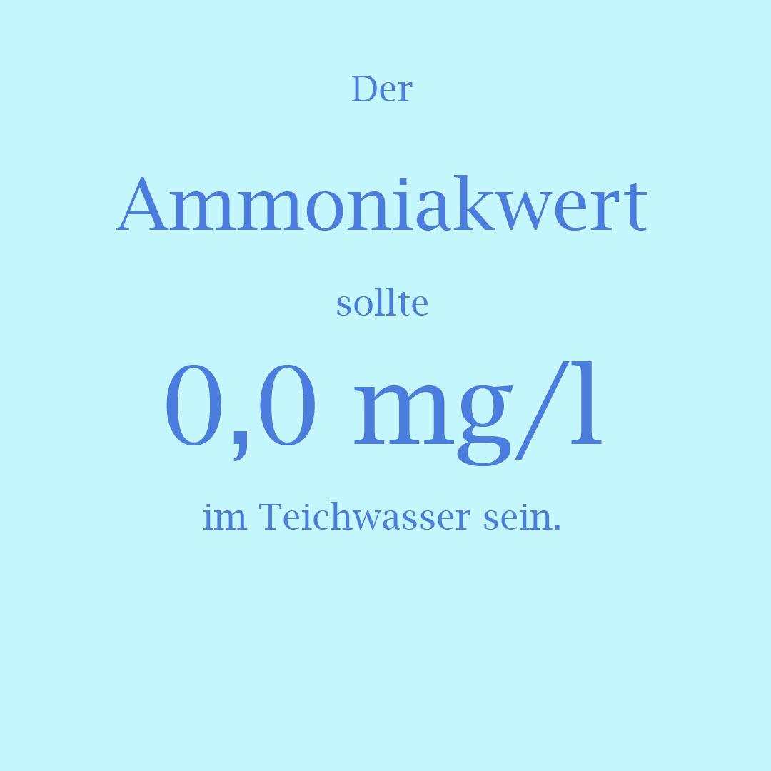 0,0 mg/l