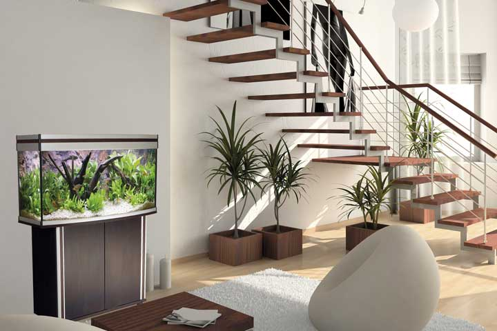 aquarium was brauche ich teichpoint blog ratgeber tipps. Black Bedroom Furniture Sets. Home Design Ideas