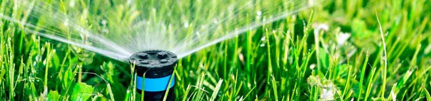 Der Rasensprinkler sorgt für eine gute Gartenbewaesserung